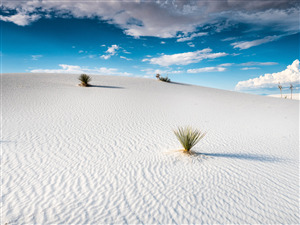 White Sands National Park in New Mexico Photo